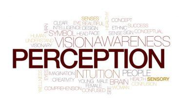 The power of perception - Howard Feldman