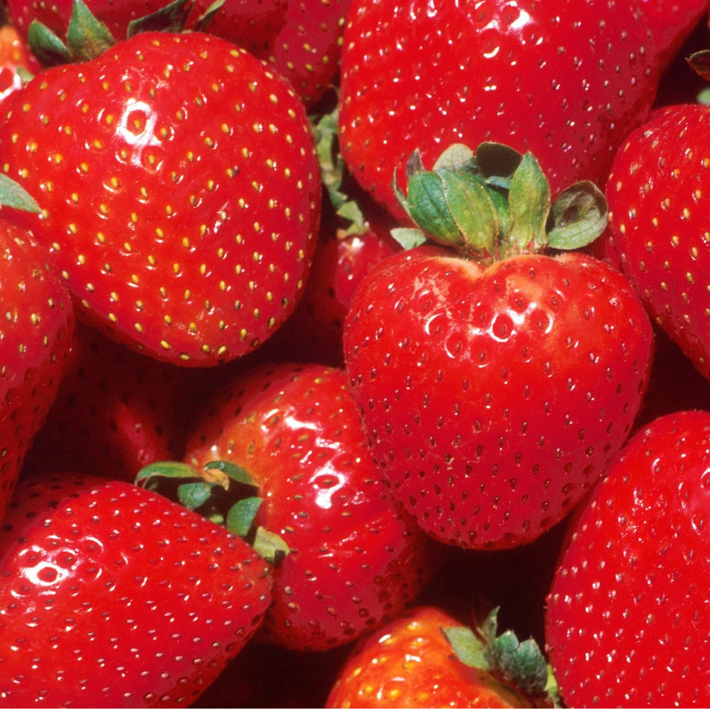 Australian strawberries